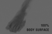 body surface